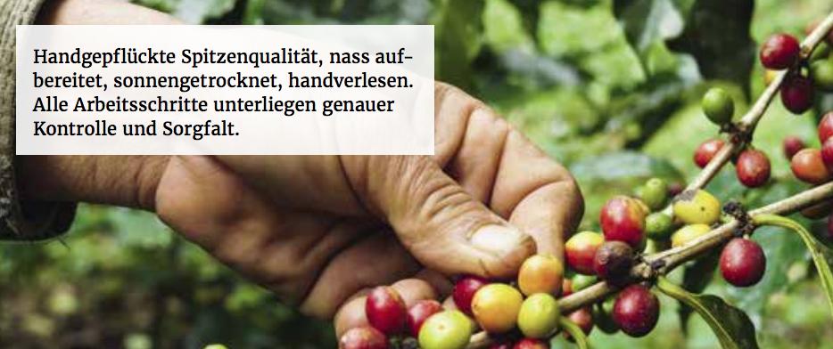 Wo kann ich fairtrade kaufen - Günstiger Fairtrade Kaffee und Fairtrade Tee online kaufen